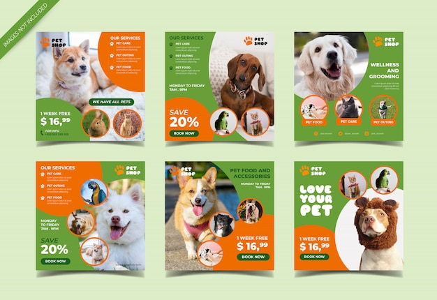 Pet shop instagram post template Premium Vector