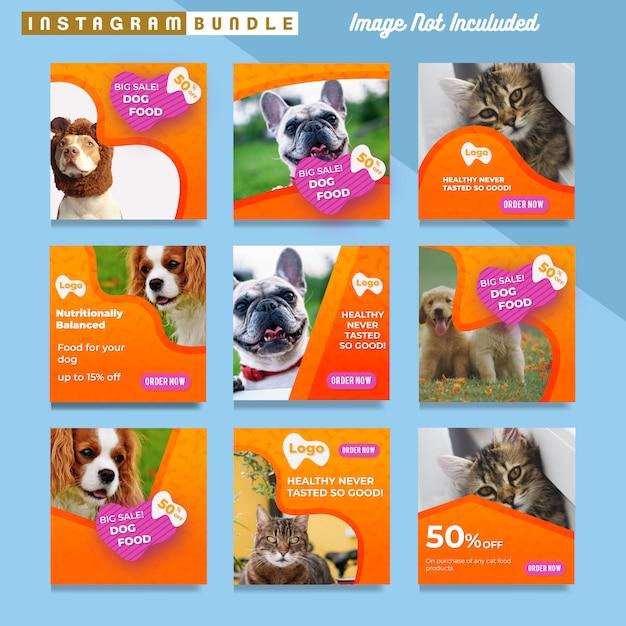 Pet shop instagram post template Premium Vector