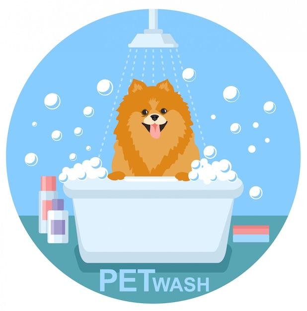Pet wash。犬用洗剤、ペット用ヘルスケアソリューション Premiumベクター