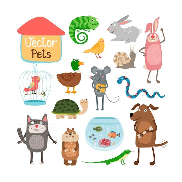 Illustrazione di animali domestici isolato su priorità bassa bianca Vettore gratuito