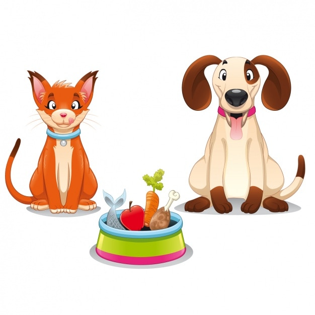 Pets ready to eat Free Vector