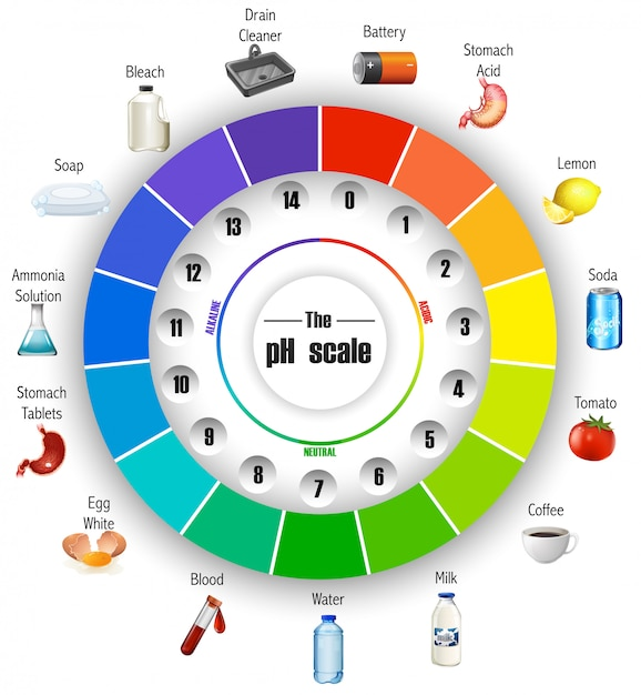 The ph scale wheel Free Vector