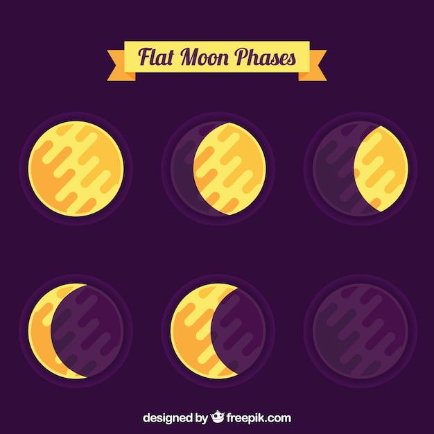 Phases of the moon in flat design Free Vector