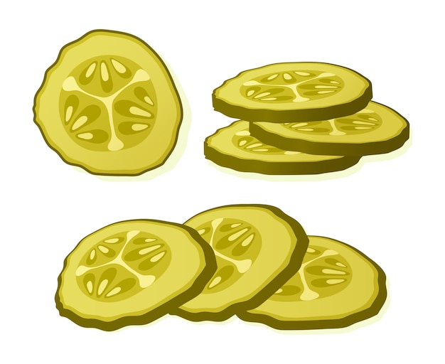 Pickled cucumber slice isolated on white background. marinated pickled cucumber isolated.  illustration. Premium Vector