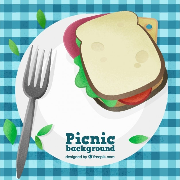 Picnic with delicious sandwich\ background