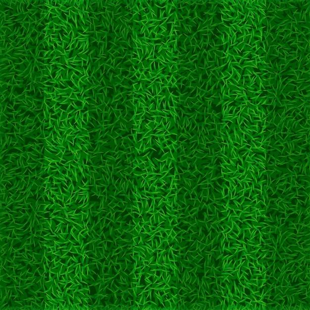 Изображение поля травы Premium векторы