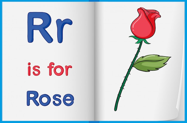 A picture of a rose in a book Free Vector