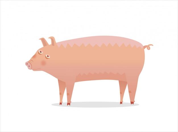 Pig Premium Vector