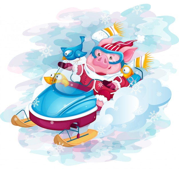 Piggy and birds ride fast snowmobile. Premium Vector