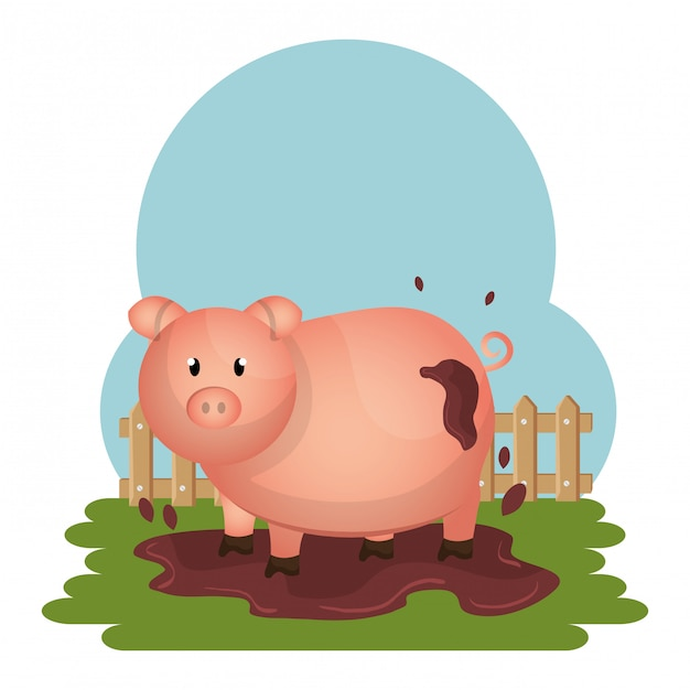 Pigs in the farm scene Free Vector