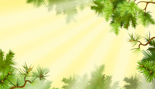 Pine branches. sunny morning. Premium Vector