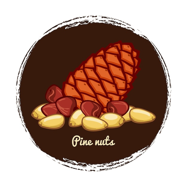 Pine cone with nuts Premium Vector