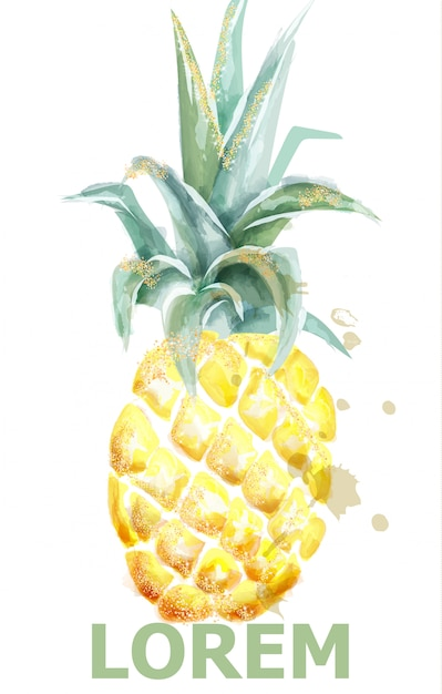 Pineapple watercolor Premium Vector