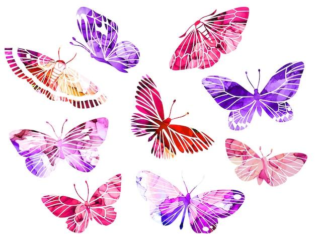 ピンクと紫の抽象的な水彩蝶 Premiumベクター