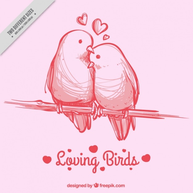 Pink background with hand-drawn birds Free Vector
