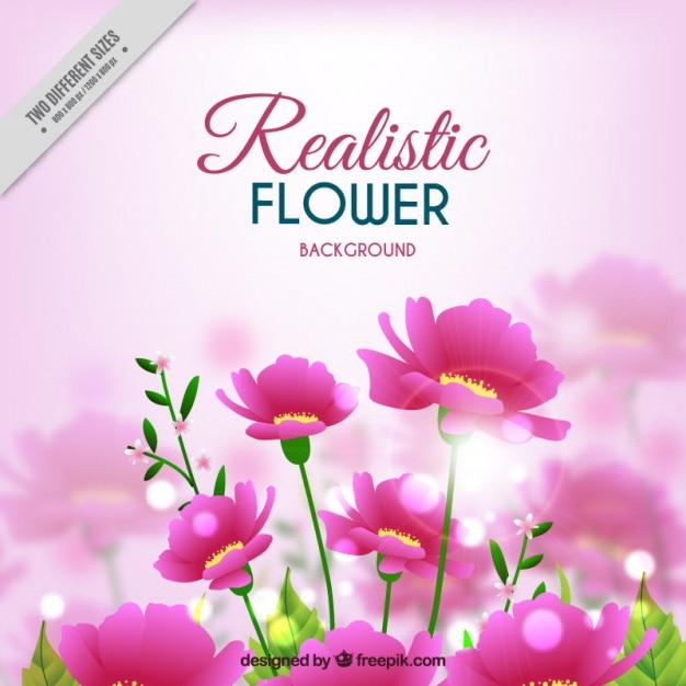 Pink flower vectors free vector graphics everypixel pink flowers background in realisticstyle mightylinksfo