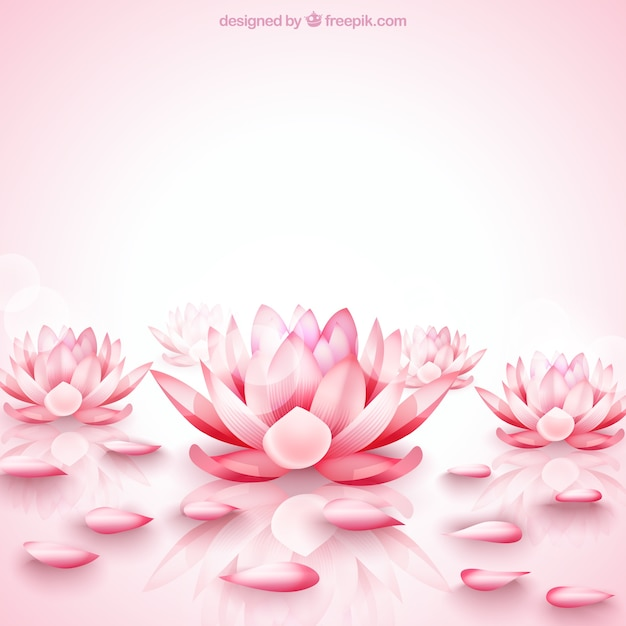 Pink Lotus Flowers Background Vector Free Download