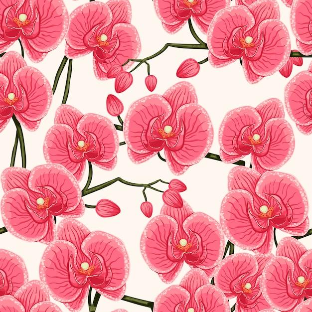 ピンクの蘭 Premiumベクター