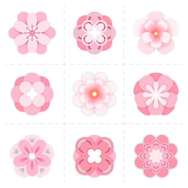 핑크 종이 사쿠라 꽃. 고립 된 꽃 사쿠라 꽃 프리미엄 벡터