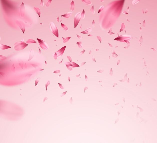 Pink sakura falling petals background. Premium Vector