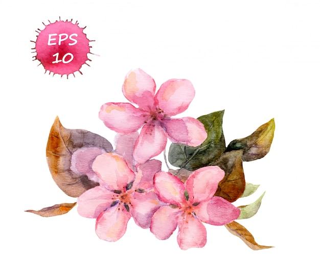 Pink spring blossom flower: apple, cherry, sakura. Premium Vector
