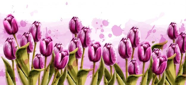 Pink tulips spring background watercolor Premium Vector
