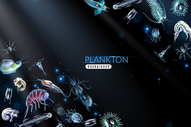 Fondo astratto del plancton con l'illustrazione differente del fumetto sia del fitoplancton che dello zooplancton del piccolo organismo marino Vettore gratuito