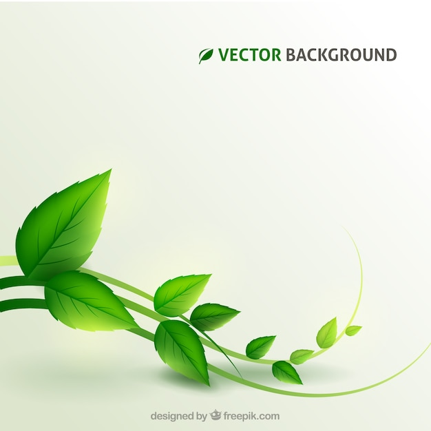 Plant background Free Vector