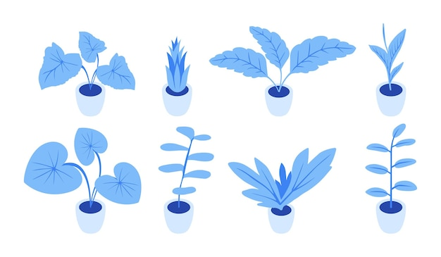 Planting of greenery for the isometric world interior. stylish blue plants. set of few plants for room. Premium Vector