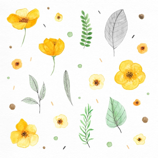 Plants and flowers painted with watercolors Free Vector