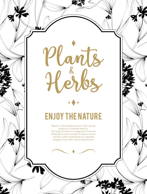 Plants And Herbs Background Element For Design Or
