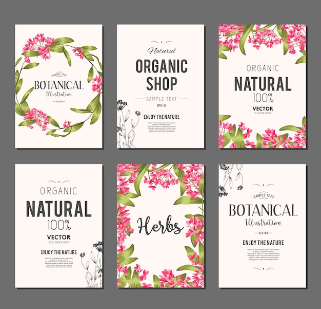 Plants and herbs banners set. element for design or invitation card Free Vector