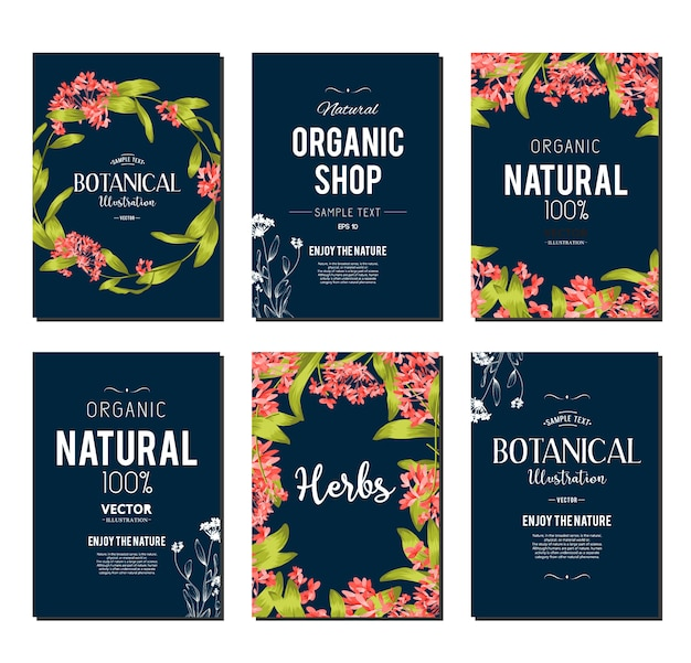 Plants And Herbs Banners Set Element For Design Or