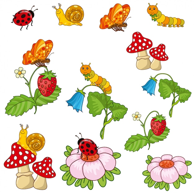 Plants and insects. Premium Vector