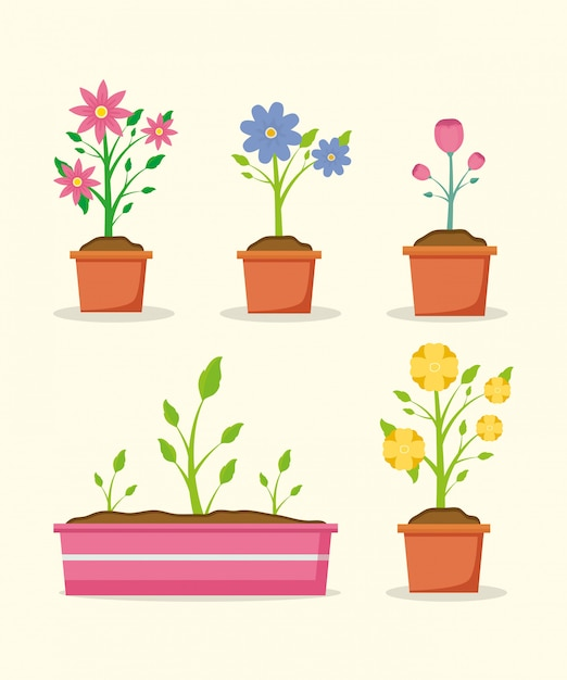 Plants in pots Free Vector