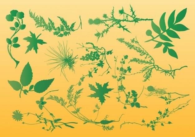 Plants Vector Graphics Vector Free Download