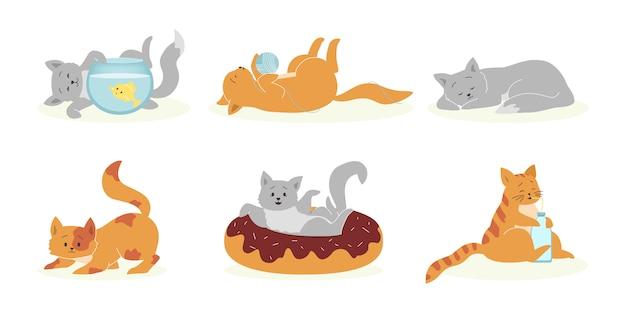 遊び心のあるグレーとオレンジの猫セット 無料ベクター