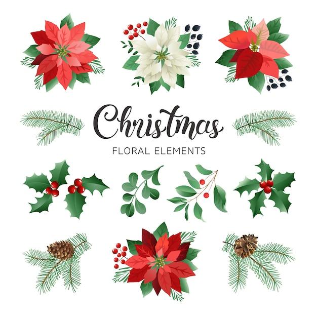 Цветы и рождественские элементы поинсеттиа Premium векторы