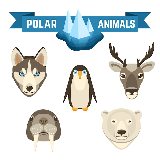 Polar animals set Free Vector