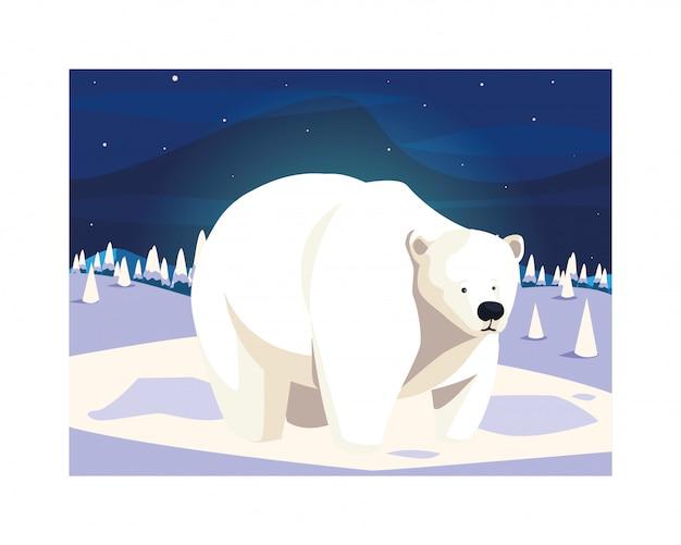 Polar bear at the north pole Premium Vector