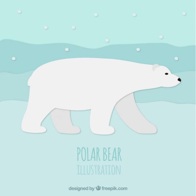polar bear vector | free download