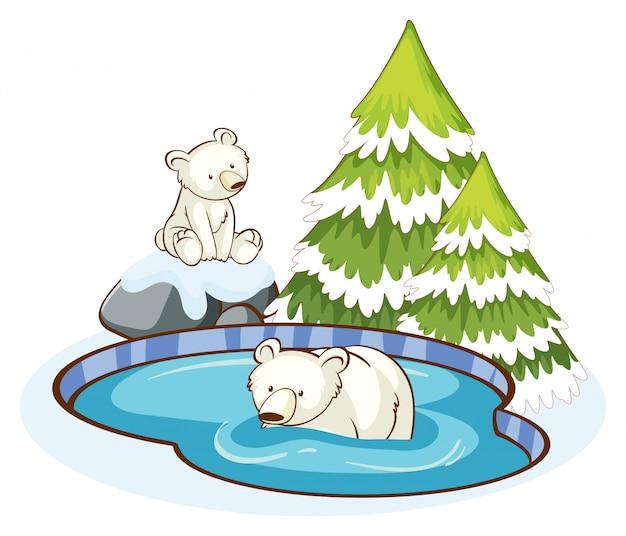 雪の山のホッキョクグマ 無料ベクター