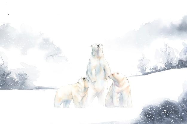 Polar bears in the snow watercolor vector Free Vector
