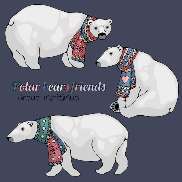 Polar bears. Premium Vector