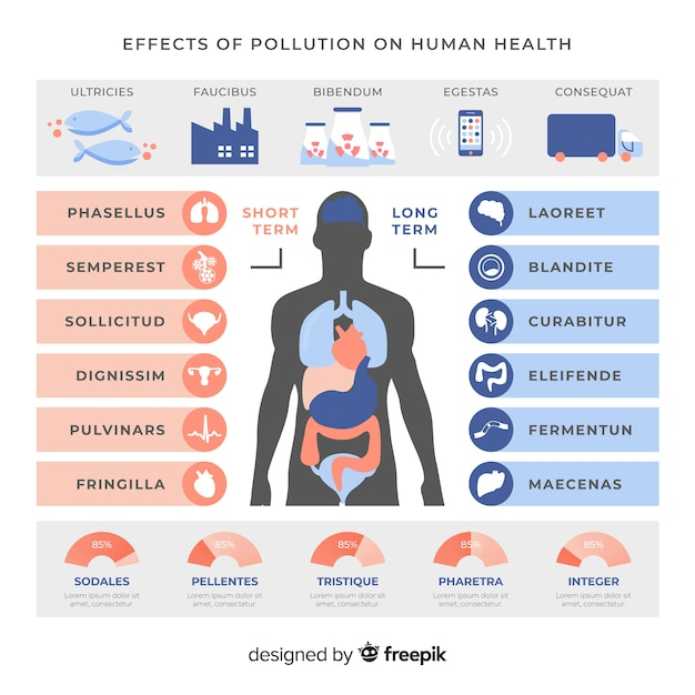 Pollution in human body infographic template Free Vector
