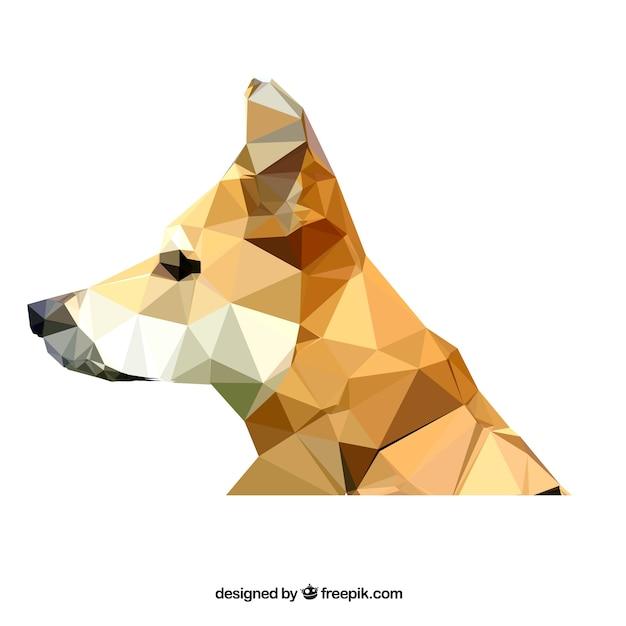Polygonal dog