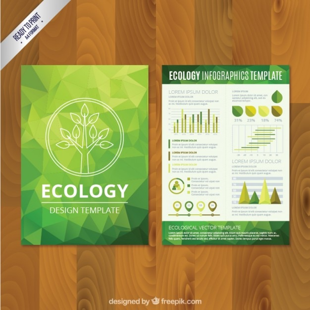 polygonal eco brochure Free Vector