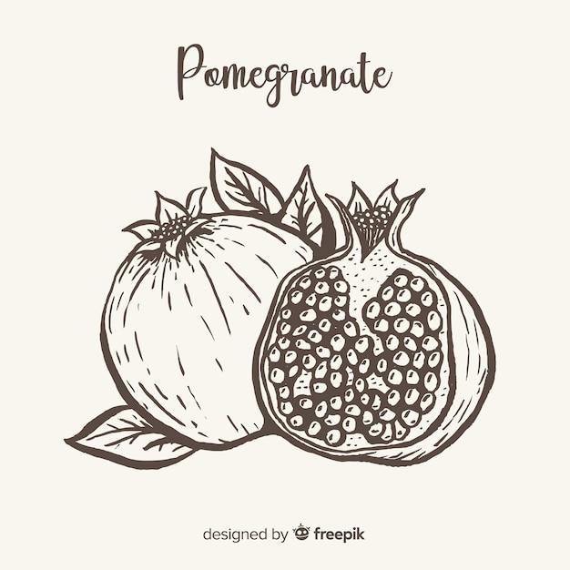 Pomegranate Free Vector