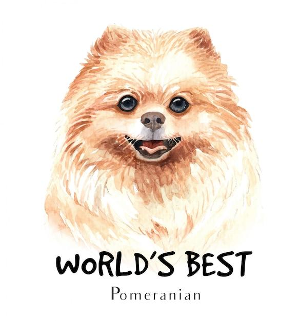 POMERANIAN SPITZ CUTE DOG WEARING MUZZLE GREETINGS NOTE CARD
