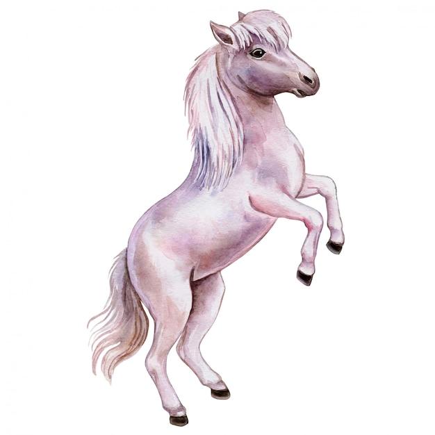 Pony pink in watercolor Premium Vector